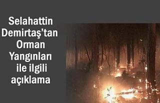 Selahattin Demirtaş'tan Orman Yangınlarıyla ilgili...
