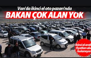 Van araba pazarı sinek avlıyor
