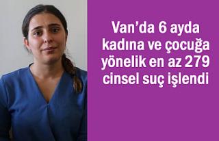 Van'da 6 ayda kadına ve çocuğa karşı 279 cinsel...