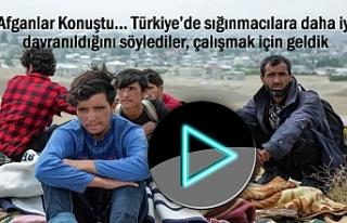 İstanbul, Ankara diye Van ve Tatvan'da dağ başına...
