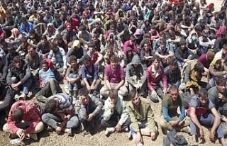 Van'da yakalanan 300 mülteci sınır dışı...