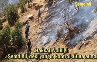 Valilik: Şemdinli'deki yangın kontrol altına...