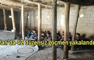 Van'da 42 göçmen hayvan ahırında yakalandı