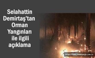 Selahattin Demirtaş'tan Orman Yangınlarıyla ilgili paylaşım