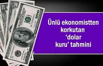 Ünlü ekonomistten korkutan 'dolar kuru' açıklaması