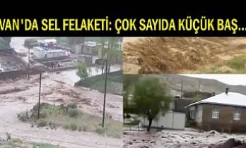 Van'ın üç ilçesinde Sel Felaketi