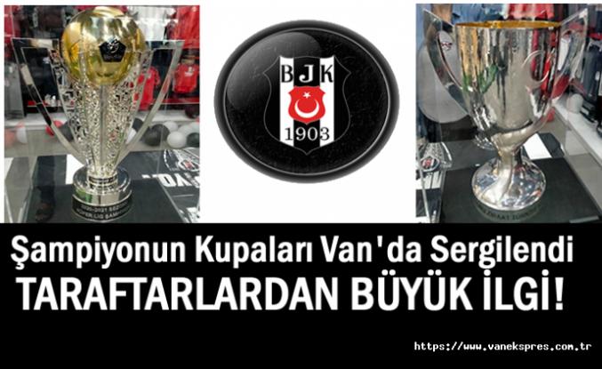 Şampiyon Beşiktaş'ın Kupaları Van'da Sergilendi